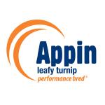 Appin (square)