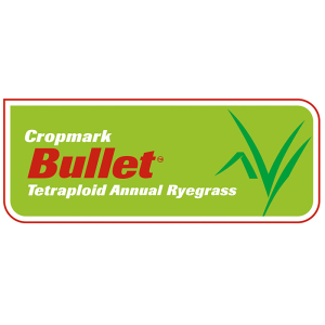 Bullet Tetraploid Annual Ryegrass - Notman Pasture Seeds