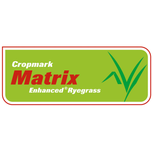 Matrix Enhanced Ryegrass - Notman Pasture Seeds