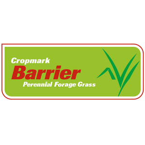 Barrier Perennial Ryegrass - Notman Pasture Seeds