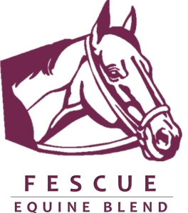 Equine - Fescue Blend - Notman Pasture Seeds