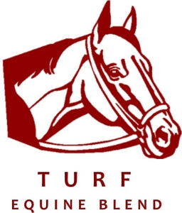 Equine - Turf Blend - Notman Pasture Seeds
