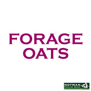 Forage Oats