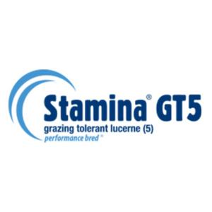 Stamina GT5 - Notman Pasture Seeds