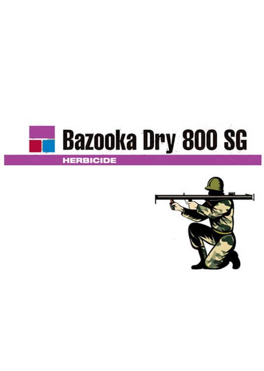 BAZOOKA-DRY-800-SG-Logo