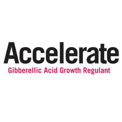 Accelerate Gibbellic Acid