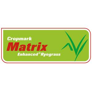 Matrix Enhanced Ryegrass - Notman Pasture Seeds