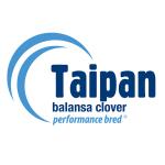 Taipan Balansa Clover (square)