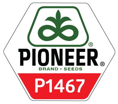 P1467