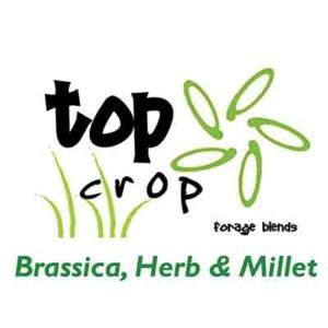 Top-Crop-Brassica-Herb-&-Millet