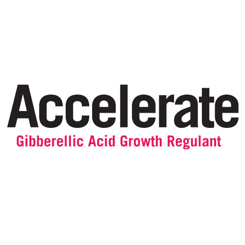 Accelerate Gibbellic Acid
