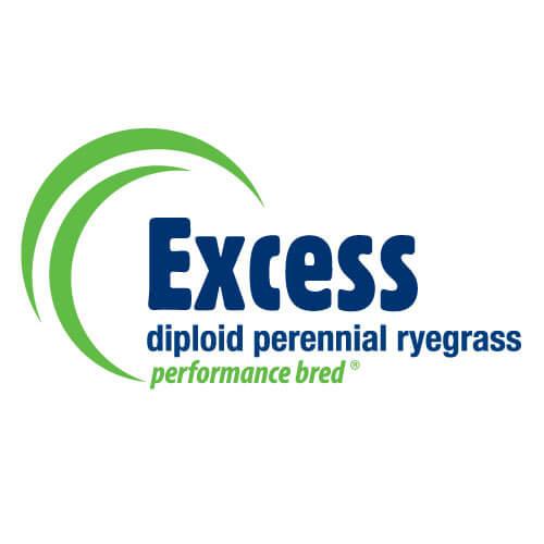 Excess-AR37-Notman-Seeds