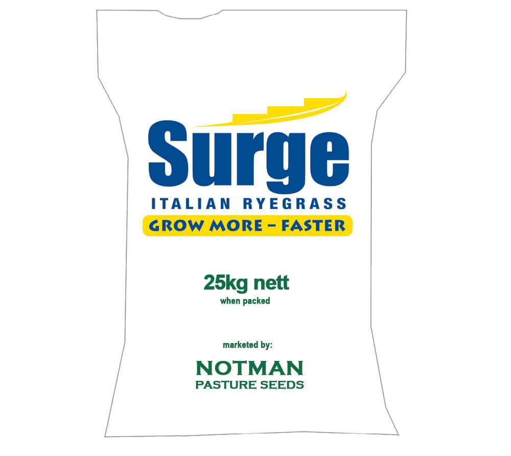 Surge Italian Ryegrass