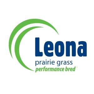 Leona-Prarie-Grass-Notman-Pasture-Seeds-300x300