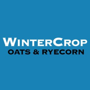 WinterCrop-Oats-and-Ryecorn