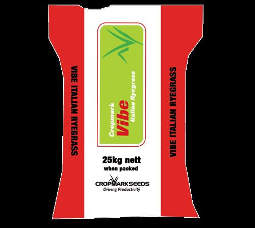 Vibe-Italian-Ryegrass-TB