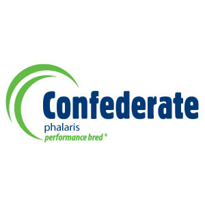 Confederate-Phalaris