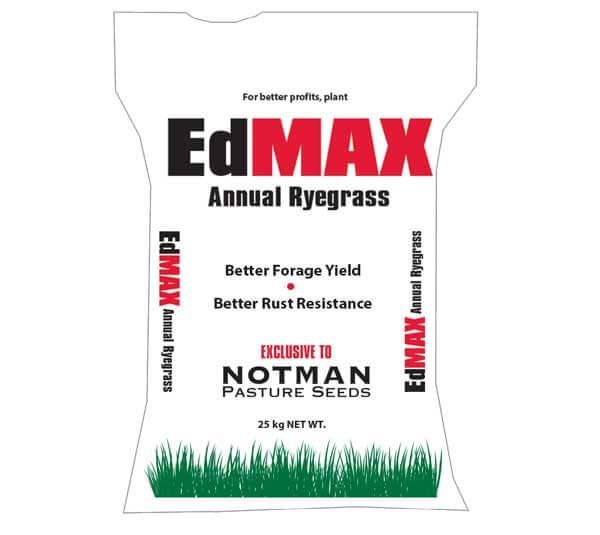 Ed MAX Annual Ryegrass