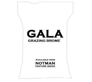 Gala Grazing Brome