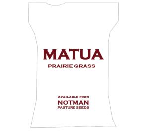 Matua Prairie Grass