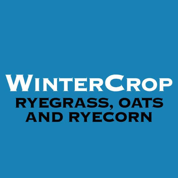 WinterCrop-Ryegrass-Oats-&-Ryecorn
